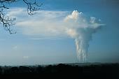 carbono.jpg